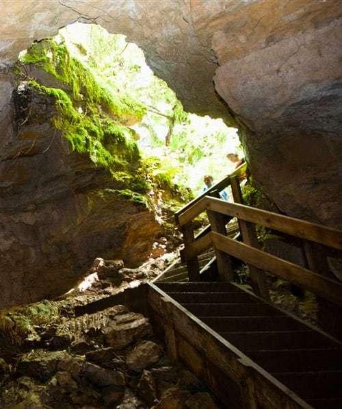 Piripiri Cave Waitomo