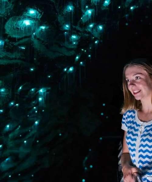 Ruakuri Cave tour Waitomo glow worms
