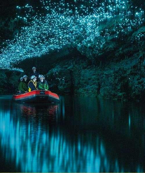 Spellbound cave tour Waitomo NZ