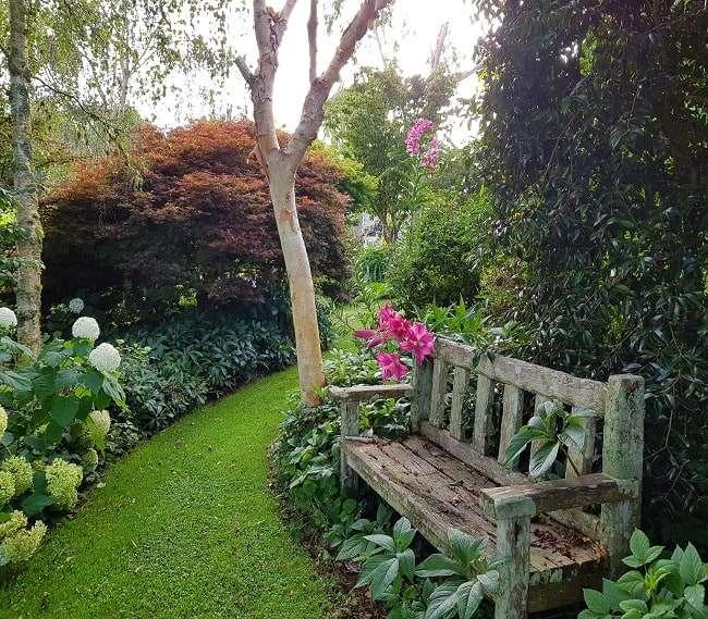 https://kamahi.co.nz/wp-content/uploads/Garden-at-Kamahi.jpg