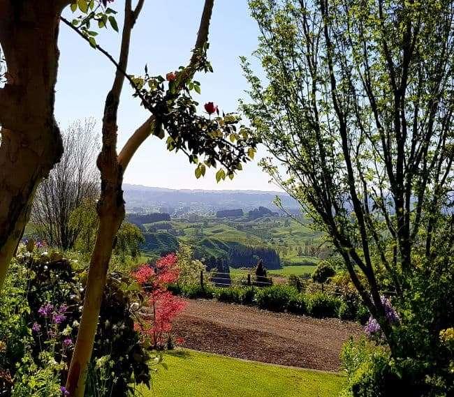 https://kamahi.co.nz/wp-content/uploads/Garden-views-Kamahi-Cottage.jpg