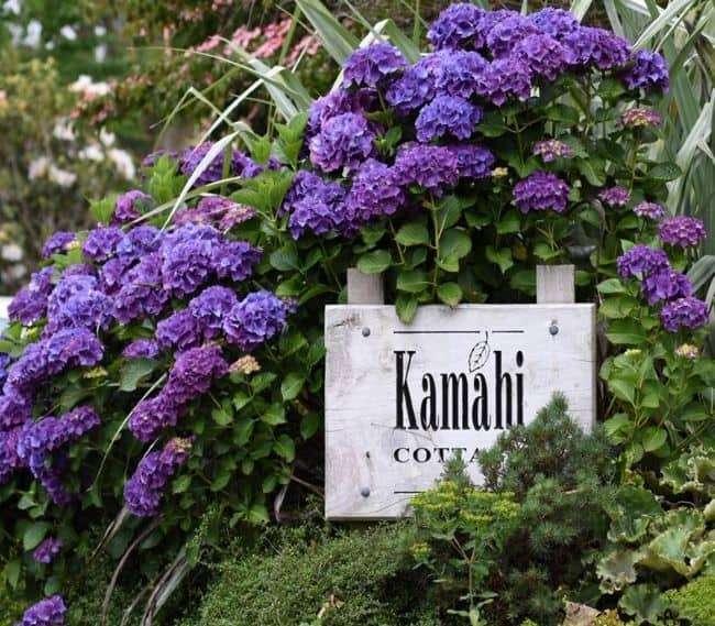 https://kamahi.co.nz/wp-content/uploads/Kamahi-Cottage-entrance.jpg