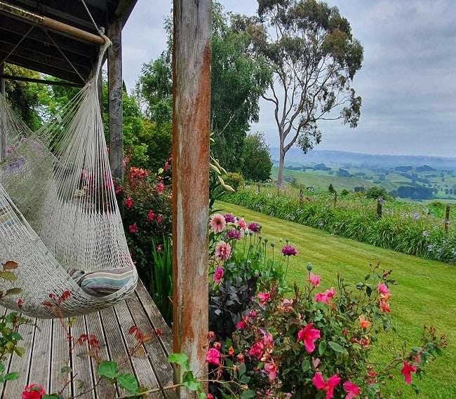 https://kamahi.co.nz/wp-content/uploads/Summer-on-the-veranda.jpg
