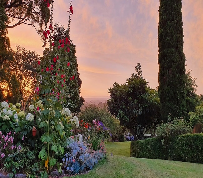 https://kamahi.co.nz/wp-content/uploads/Sunsert-garden-views.jpg
